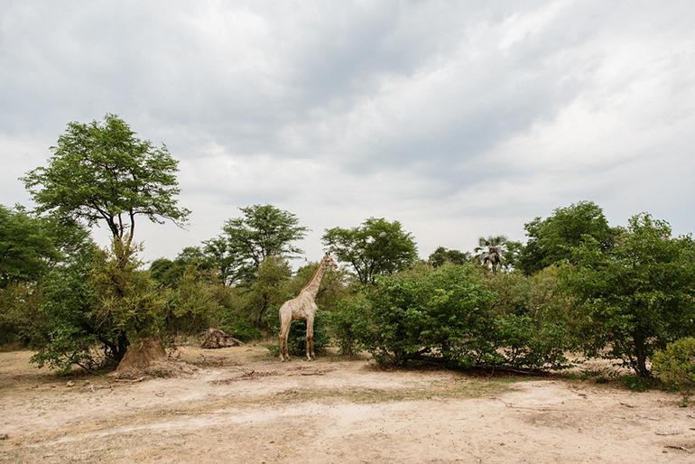 MichaelLiedtke_Zambia151